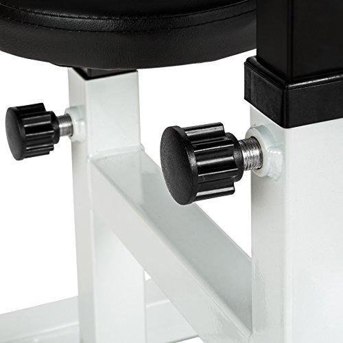 TecTake Bizeps Curl Hantelbank   Polster, Sitz und Ablage höhenverstellbar   100 x 65 x 96 cm -