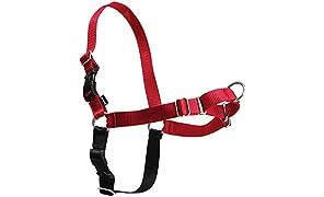 PetSafe Easy Walk dog harness.