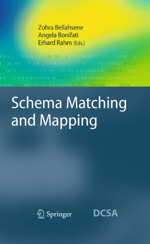 Schema Matching and Mapping (Data-Centric Systems and Applications) (English Edition)