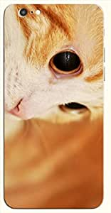 Significant multicolor printed protective REBEL mobile back cover for iPhone 6 D.No.N-L-18155-IP6