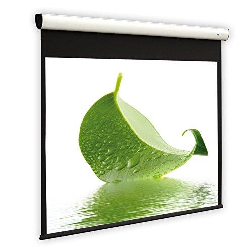 DELUXX Cinema Motor-Leinwand Elegance Mattweiß Varico Flat Heimkino- und Business-Beamer-Leinwand aus hochwertigem PVC Projektionstuch und mit leisem Somfy Motor - 4:3 - 122 x 91 cm - 60 Zoll -