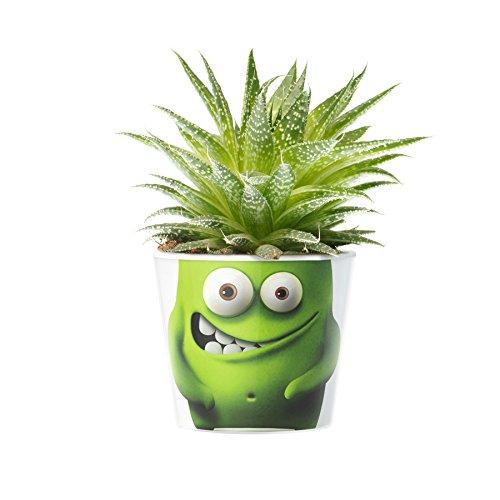 Plantmonsters Blumentopf ø 16cm | Grüne Monster-Deko für Kinder Jungs Mädchen Zimmer, Fensterbank oder (Spaß Deko Ideen Halloween)