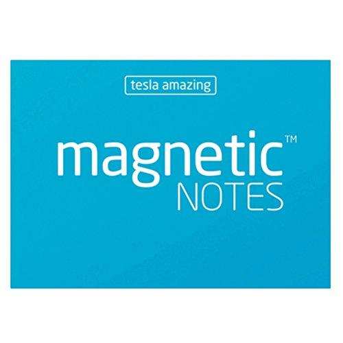Wei/ß Tesla Amazing magnetisch Note 100 Magnet Experten ta200100wh