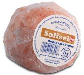 Dodson & horrell Salisel Cheval Pierre de sel,