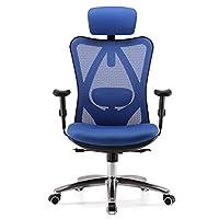 SIHOO Ergonomic Office Chair Adjustable Headrest and Lumbar Support High Back Computer Desk Chair(Black)