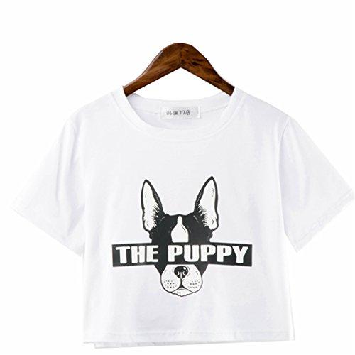 Braune Cut-out (COCO clothing Damen Puppy Hund Gedruckt Kurz Ärmel Rundausschnitt Sommer Baumwolle Crop Tops Oberteil Frauen BeiläufigeBasic T-Shirt Mädchen Street Loose Herbst Kurz Blusen Unterhemd (XL, Weiß))
