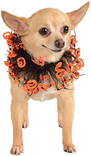 Rubies Black Orange Jack O Lantern Pet Collar (Kostüme Lantern Black)