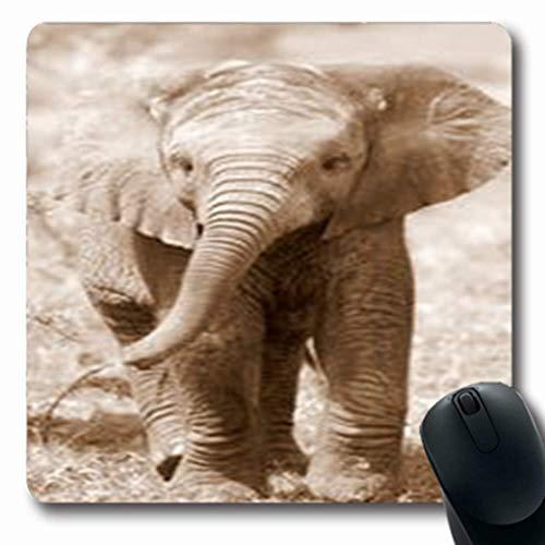 Luancrop Mousepads Grauer Netter Baby-Afrikaner-Elefant Loxodonta Diese längliches Spiel-Mausunterlage der Sepia-Tier-Natur-Asien rutschfeste Gummimatte - Dekorationen Elefant Grauer Baby