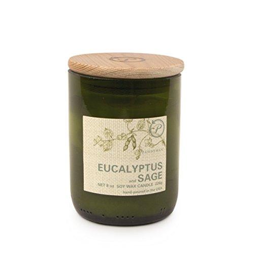 Paddywax Eco Kollektion Reed Öl Diffusor Set Duftkerze Soja-Wachs 8 oz Eucalyptus & Sage