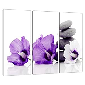 triptych triple 3 canvas purple wall art floral pictures