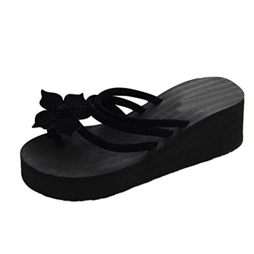 Chanclas Mujer, Xinantime Flip Flop Ocio Mujeres Zapatos