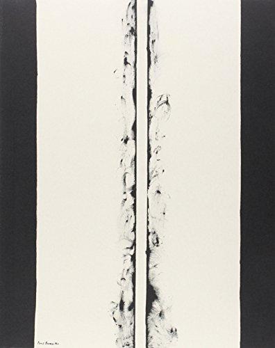 Fuego blanco: La colección moderna del Kunstmuseum Basel por Vv.Aa.