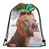 "New Era Shop Funny Dog Wearing Cute Halloween Costume Animals Wildlife Holidays 3D Print Drawstring Backpack Rucksack Shoulder Bags Gym Bag for Adult 16.9""X14"""