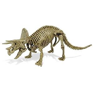 Cazadores Dr. Steve CL1503K - Paleo Expedición Kit Dino Dig: Modelo Triceratops