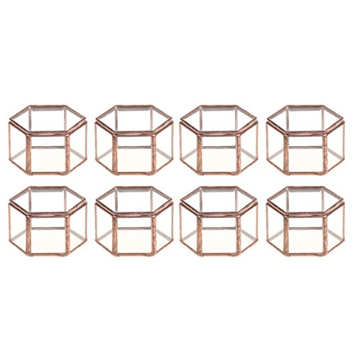 SM SunniMix 8pcs Mini Geometrische Glasterrarium Schmuckschatulle Gartengewächshaus Pflanzgefüß