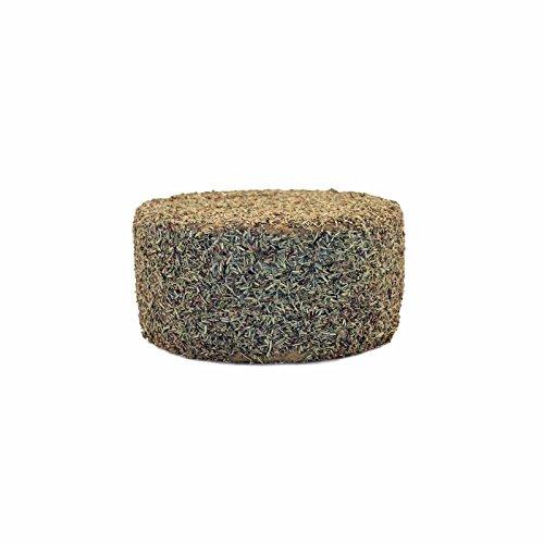 Spanischer Schafskäse in Rosmarin, 1 kg