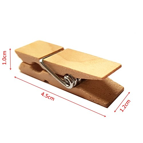 Small Wide Wooden Pegs - 4.5cm x 1.2cm - Wood Peg Clips