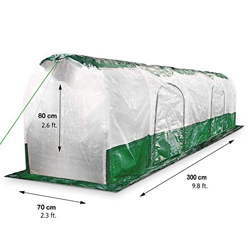Bio Green Super Dome Folientunnel Transparent, Grün