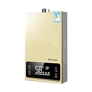 Everyday Home Portable-Erdgas-Durchlauferhitzer, Propan-Durchlauferhitzer-Edelstahl Sofortiger Kessel-Tanker-Sofortkocher 24KW mit Duschkopf und LCD-Anzeige (12L) kampierend/Haus-Dusche
