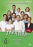 In aller Freundschaft - Staffel  4, Teil 1 (5 DVDs)