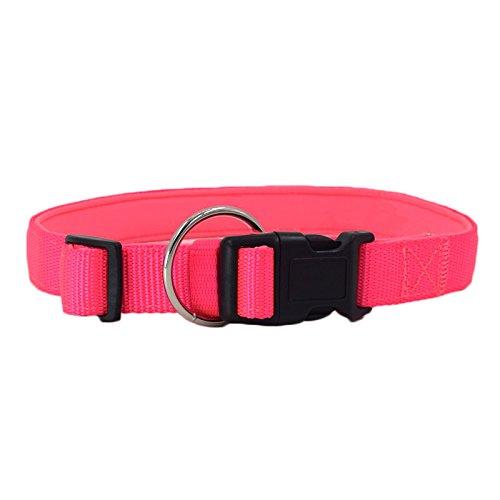 GWM Haustierkragen, Hundehalsband, Nylon, atmungsaktive Kragen, Hundehalsband, Heimtierbedarf (Farbe : Rosa, größe : M)
