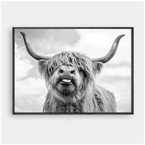 """HSFFBHFBH Cuadro de Pintura sobre Lienzo Decoración nórdica Highland Cow Cattle Wall Art Cartel de Lienzo e impresión Animal para Sala de Estar Decoración para el hogar 50x70cm (19.7""""x27.6) Sin Marco"""