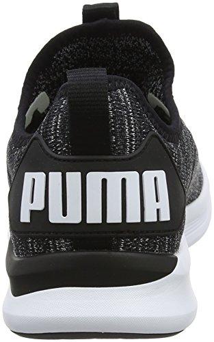 Puma Ignite Flash Evoknit, Chaussures de Cross Homme Noir (Puma Black-asphalt-puma White)