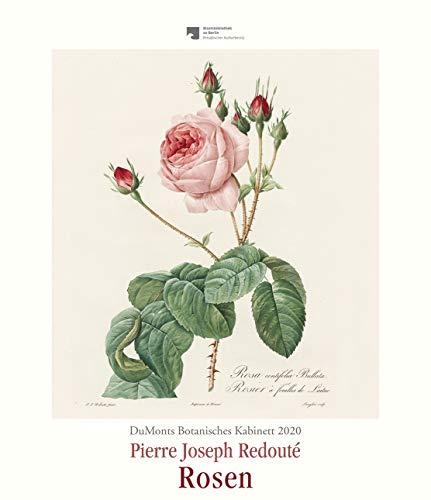 DuMonts Botanisches Kabinett - Rosen von P.J. Redouté - Kunstkalender 2020 - Wandkalender im Hochformat 34,5 x 40 cm - Botanische Rosen