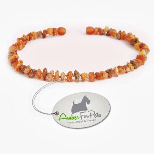 Bernstein Halsband für Hunde und Katzen Bernsteinkette Zeckenhalsband Zeckenschutz 37cm