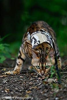 Mynwood Veste/harnais pour chat adulte Motif camouflage désert