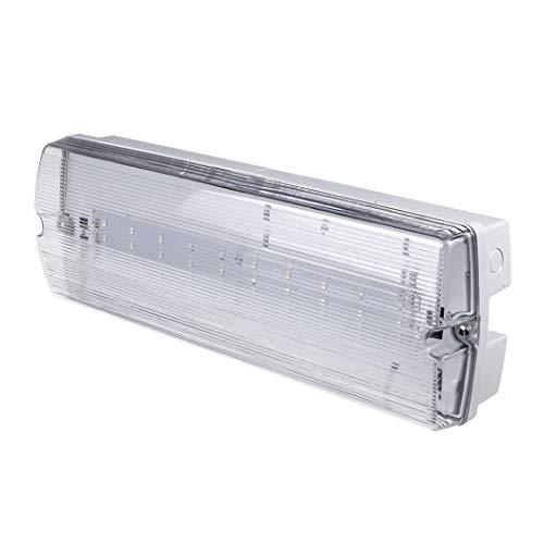 Bulkhead-licht (G.W.S® 3 W LED Notfall Bulkhead Fitting gewartet oder nicht gepflegt, Ausstiegsschild Licht IP65 wasserdicht, acryl, 3w, Wiring, 3.00W 240.00V)