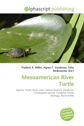 Mesoamerican River Turtle