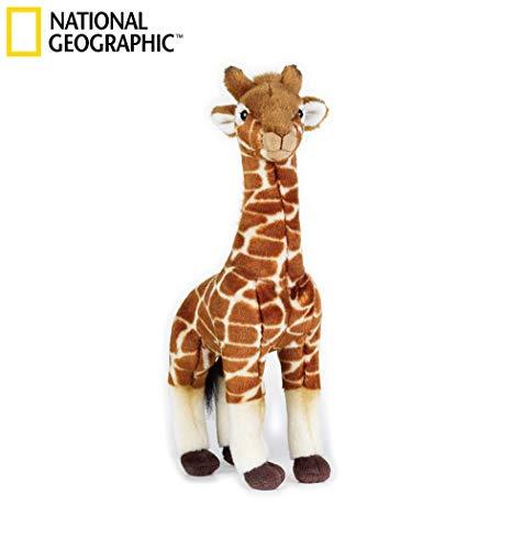 Venturelli - Giraffa Media