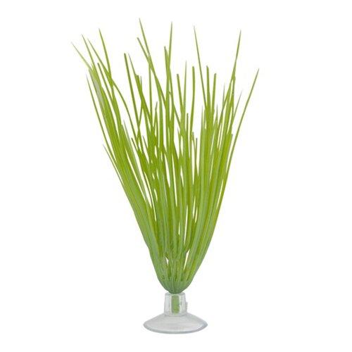 marina-betta-hairgrass-planta-con-ventosa-127-cm-color-verde