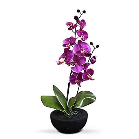Homescapes Cerise Orchid with Silk Flowers in Black Round Planter Pot 54 cm tall - Artificial Flowers and Plants for Indoor