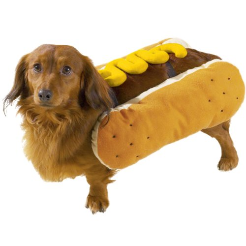 Casual Canine Hot Diggity Dog with Mustard Costume for Dogs, 14 Small/Medium by Casual Canine