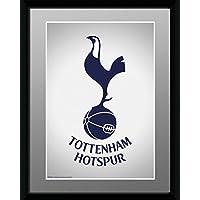 GB eye Ltd 1-Piece 8 x 6-inch Tottenham Hotspur Crest Framed Photograph