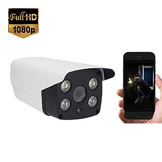 Didseth PoE IP Camera 1080P IP Surveillance Camera Dual Light Outdoor Security Camera Waterproof IP66