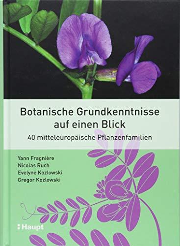 Botanische Grundkenntnisse auf einen Blick: 40 mitteleuropäische Pflanzenfamilien -