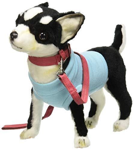 Hansa - Chihuahua Plüsch T-Shirt schwarz und blau - Chihuahua-schwarzes T-shirt