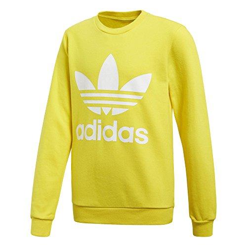 adidas Kinder Trefoil Sweatshirt, Yellow/White, 134