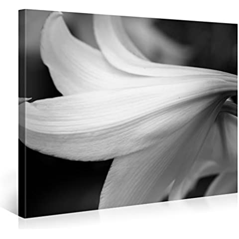 Gallery of Innovative Art – Grey Lily