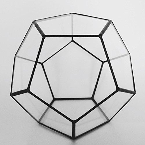 YUAN Kreative Solide Geometrie Glas Terrarium Sukkulente Box Pflanzgefäß Blumentopf Hausgarten Dekor Hängen