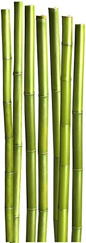 Plage Bambús Decoración Mural Adhesiva Gigante, Vinilo, Verde, 58×0.1×168 cm