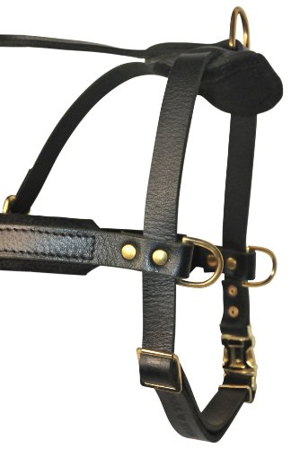 Dean-and-Tyler-The-Cowboy-Solid-Brass-Hardware-Leather-Dog-Harness-M-66-86-cm-Black