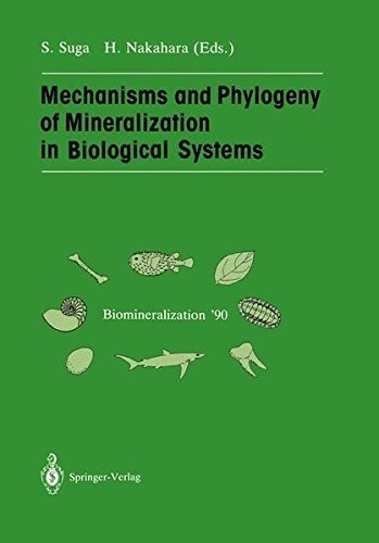 Mechanisms and Phylogeny of Mineralization in Biological Systems: Biomineralization '90 by Shoichi Suga (2013-10-04)