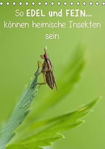 So EDEL und FEIN. können heimische Insekten sein (Tischkalender 2020 DIN A5 hoch)
