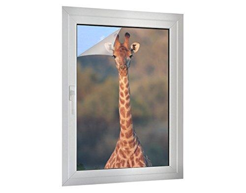 Klebefieber Sichtschutz Giraffe B x H: 50cm x 75cm