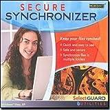 Sicherer Synchronizer