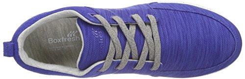 Boxfresh Aggra Flk Mesh/Sde, Baskets Basses homme Bleu - Blau (BOLD BLUE/GREY)